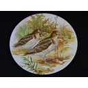 Plate of decoration in porcelain Pastaud in Limoges decor of woodcocks